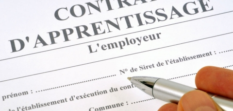 Photo d'un contrat d'apprentissage, avec les différents champs à remplir par l'employeur.